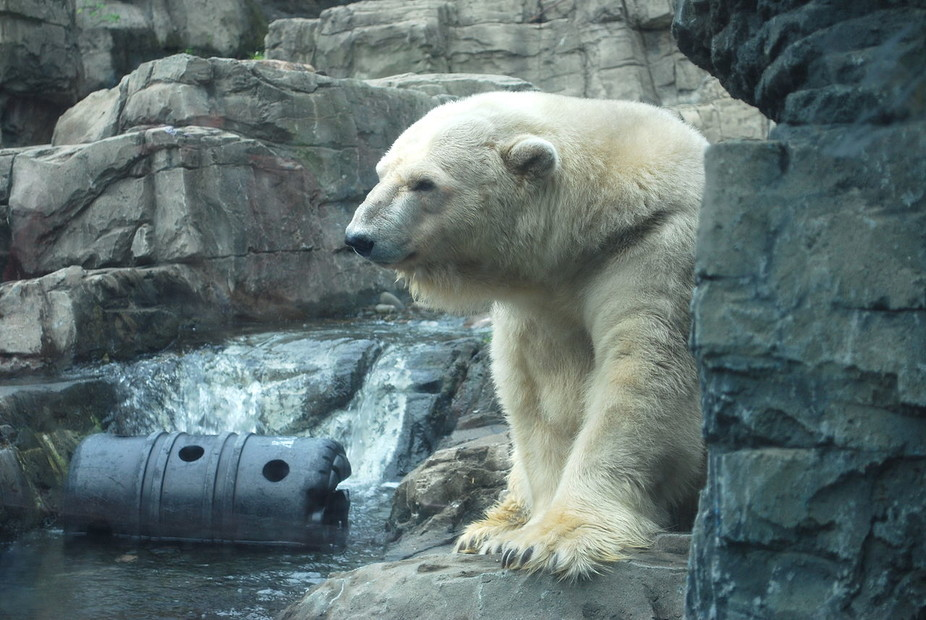 confined hot and lonely arturo.jpg