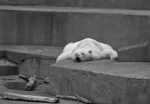arturo-save black and white.jpg