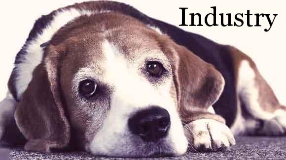 Pet Medication Industry Anita Alvarez pub date 7/ 2016