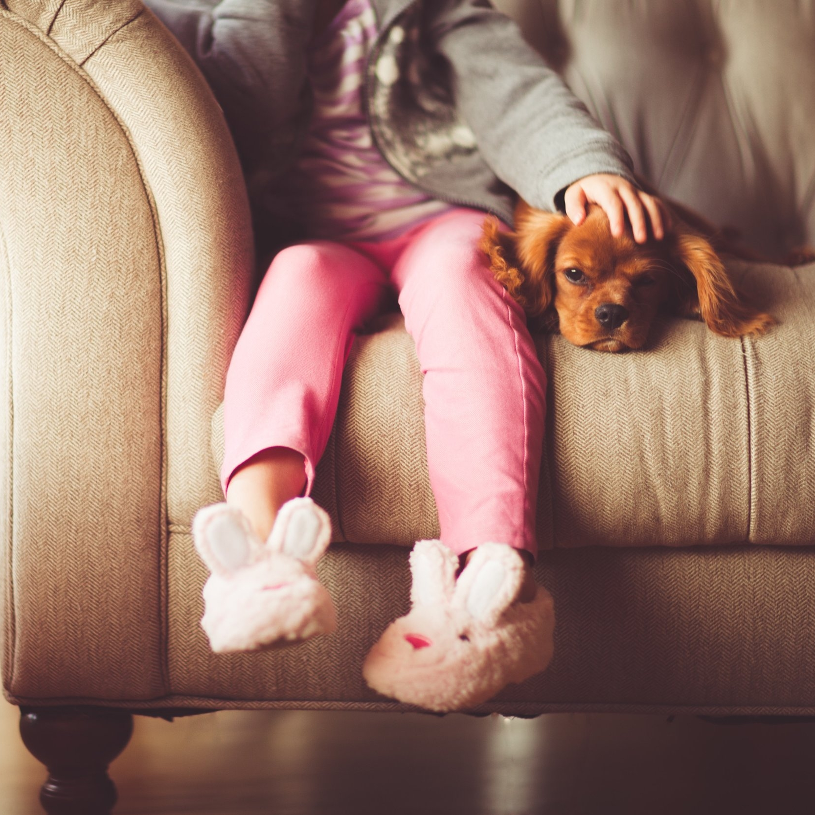 andrew branch little girl with dog on sofa Up cW.jpg