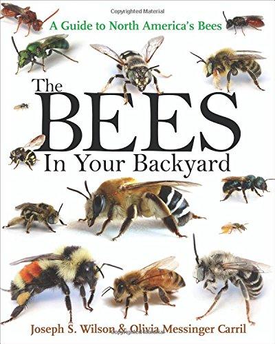 Bees In Your Backyard Josaph S, Wilson Amazon