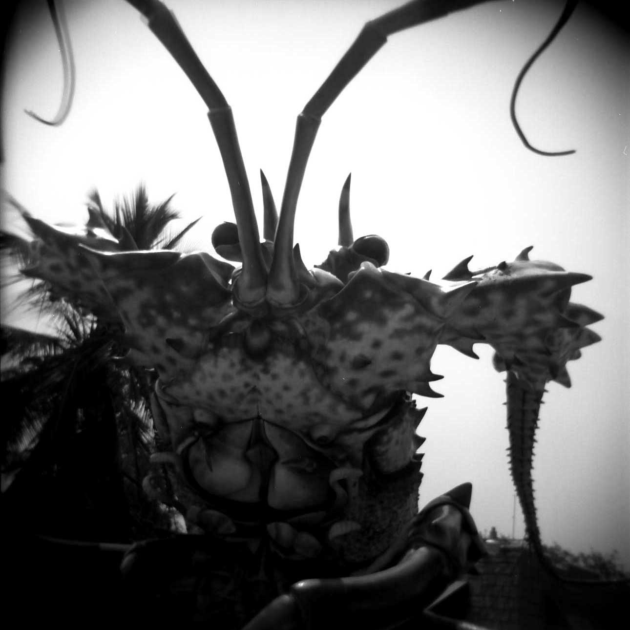 lobster sculpt.jpg