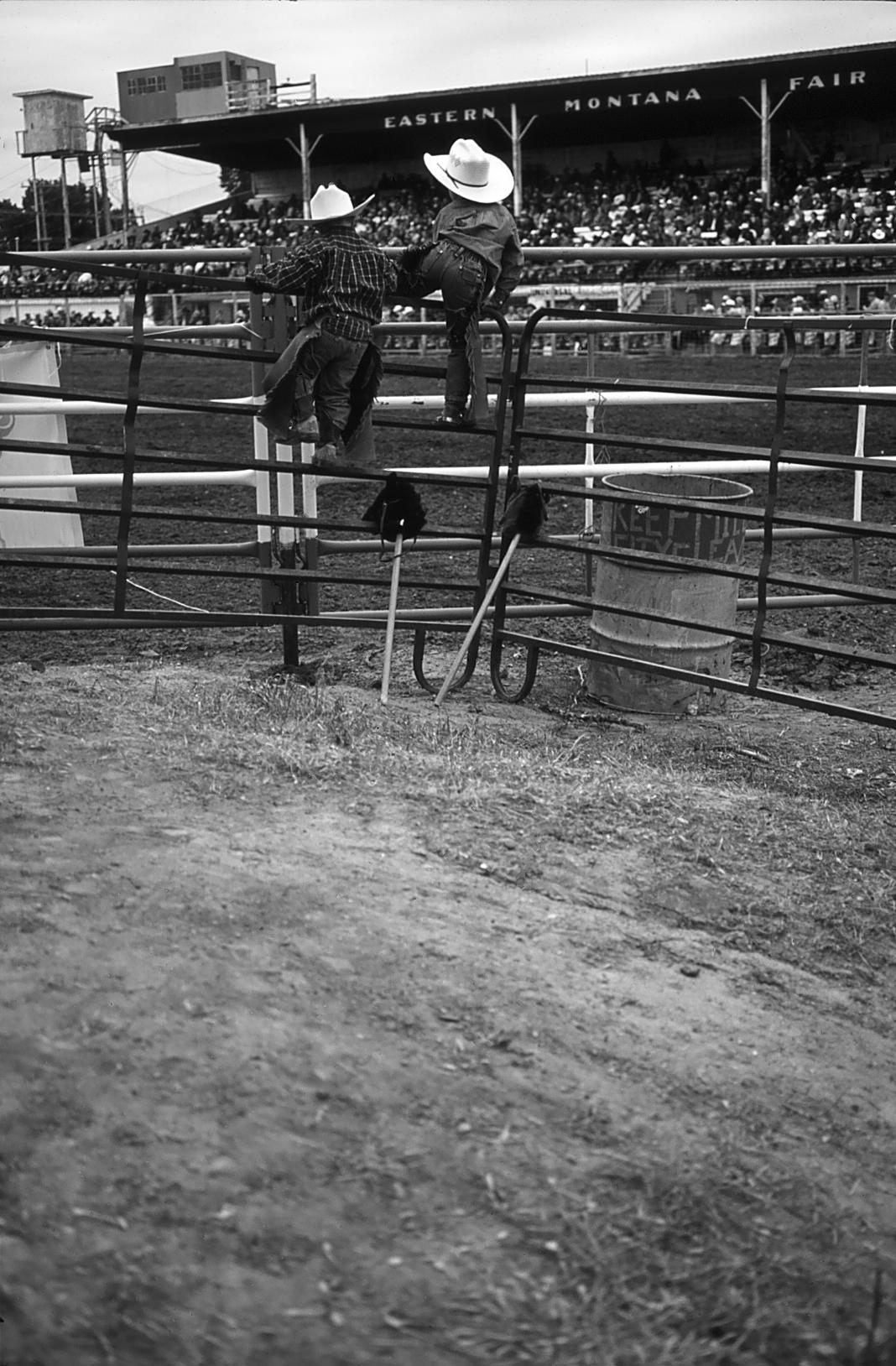 hobbyhorses.jpg
