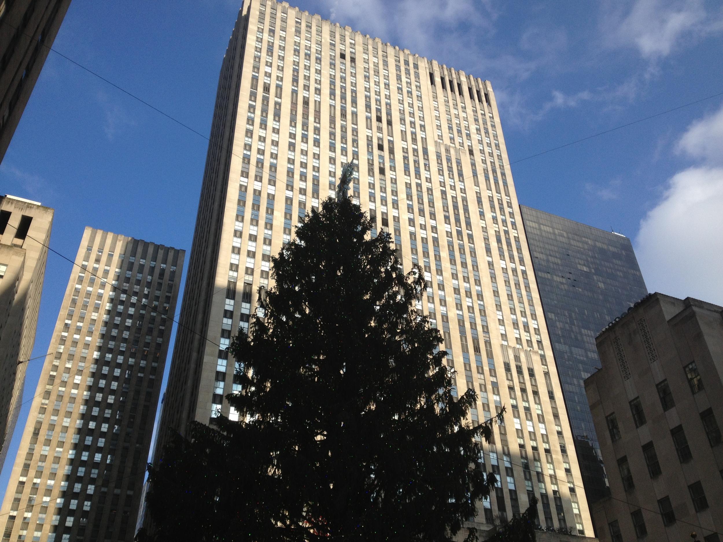 NY, Christmas, and sunshine. 12-18-12