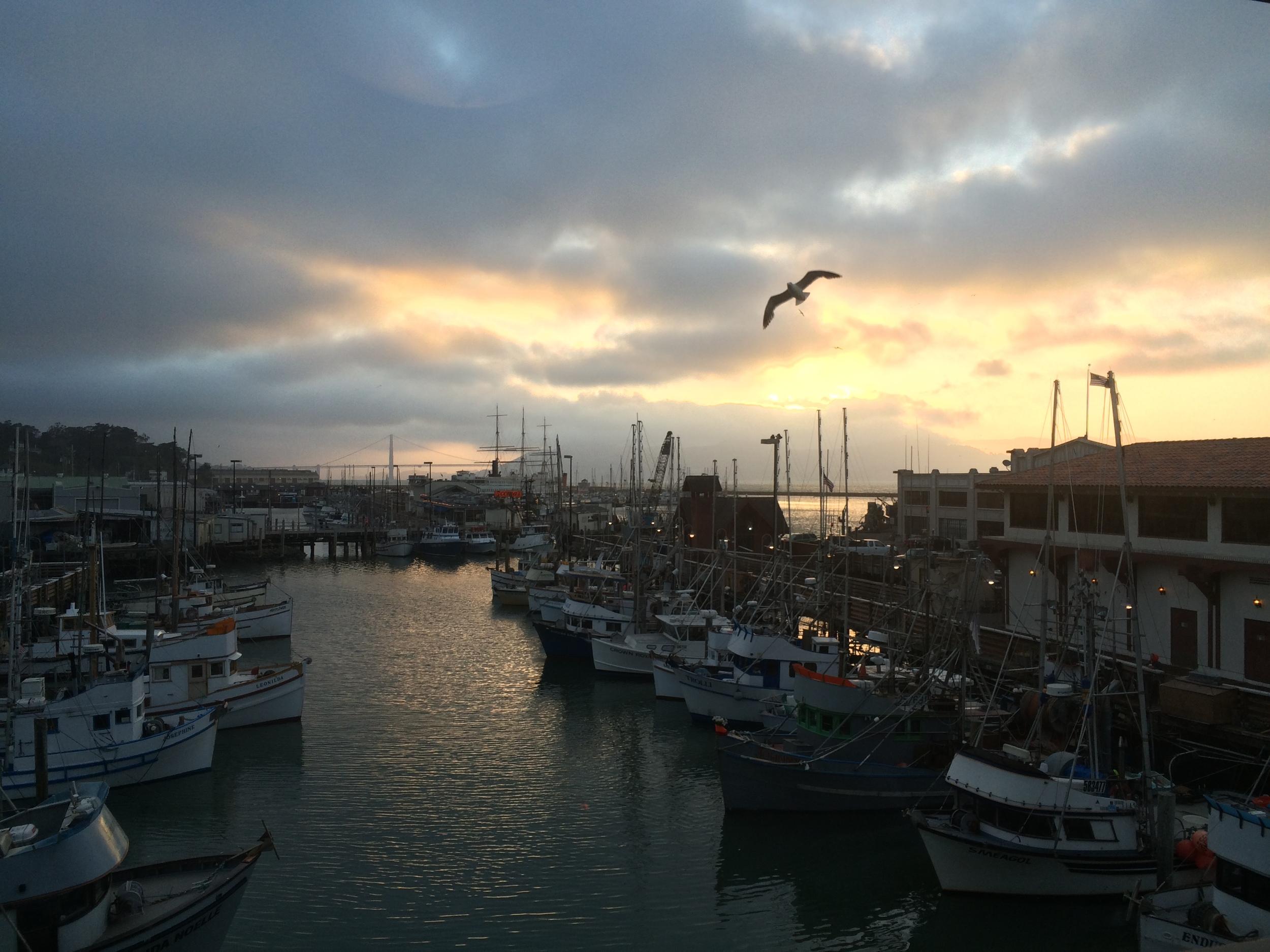 San Francisco, Fisherman's Wharf Marina Sunset, June 2015
