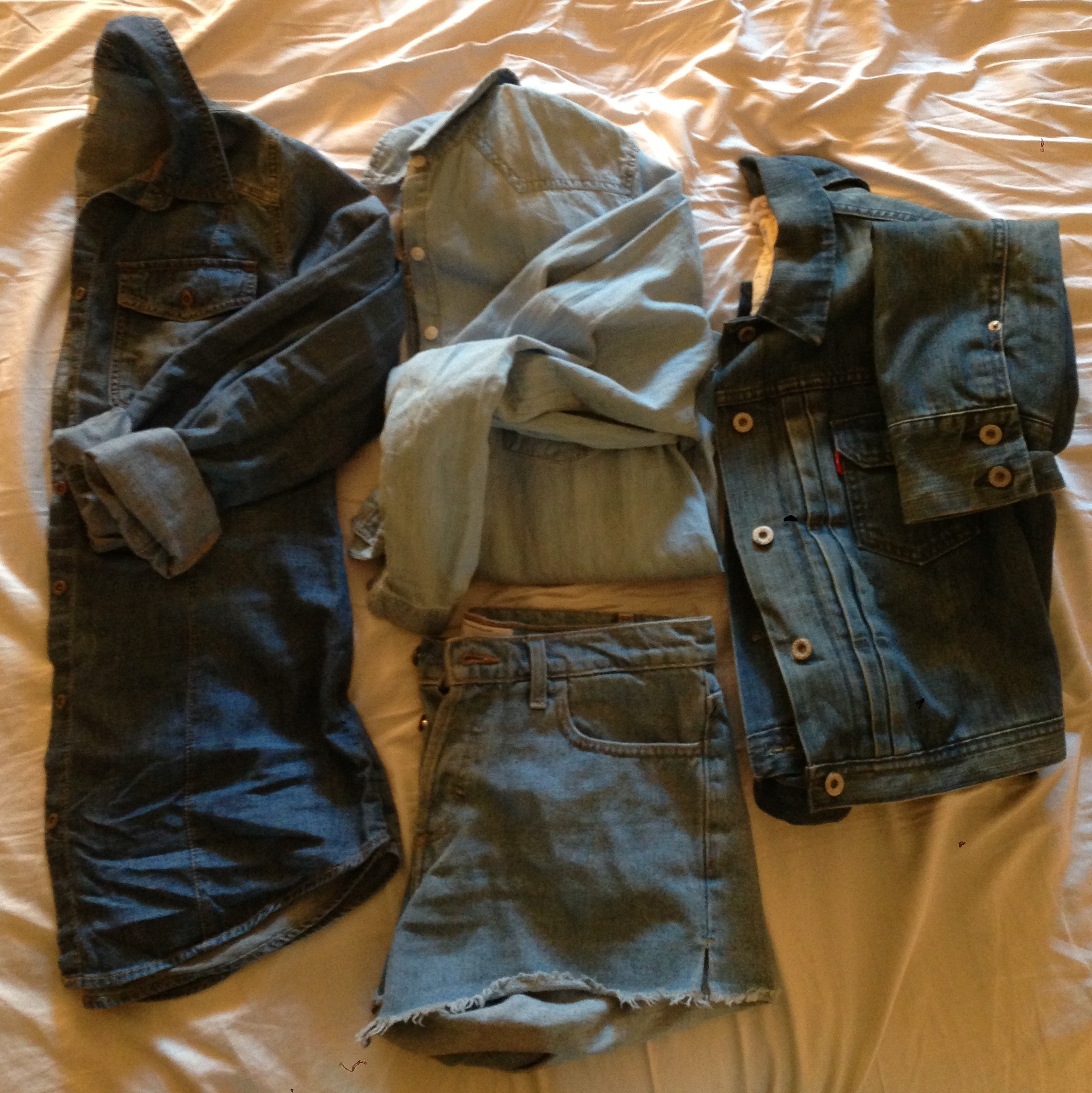 From left to rightt:  Dark denim shirt, Mossimo at Target, $24 Lightwash Boyfriend-fit Oversized denim shirt, Cotton On, $19.95 Denim cutoff shorts, American Apparel, $58 Denim Trucker Jacket, Levi's, $78