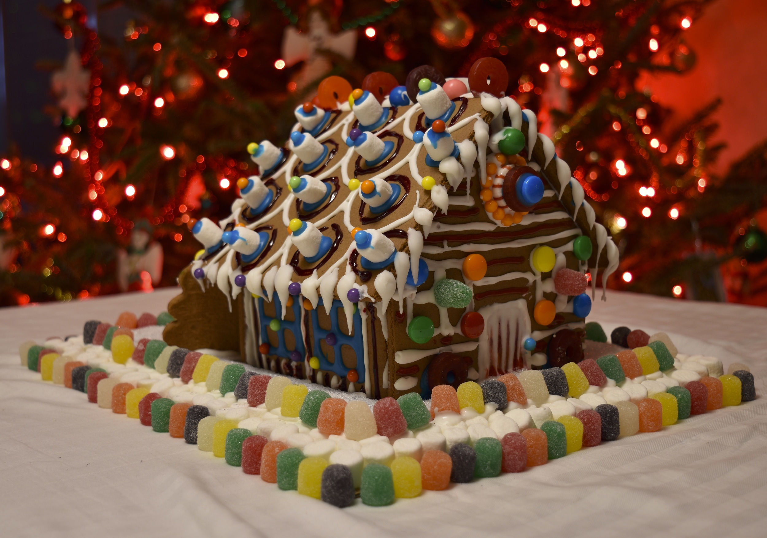 Annabelle and Dori DeCamillis made this on Christmas Eve.
