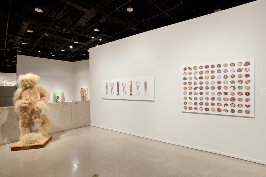 Arizona Biennial '11 | Tucson Museum of Art | Tucson, AZ, USA