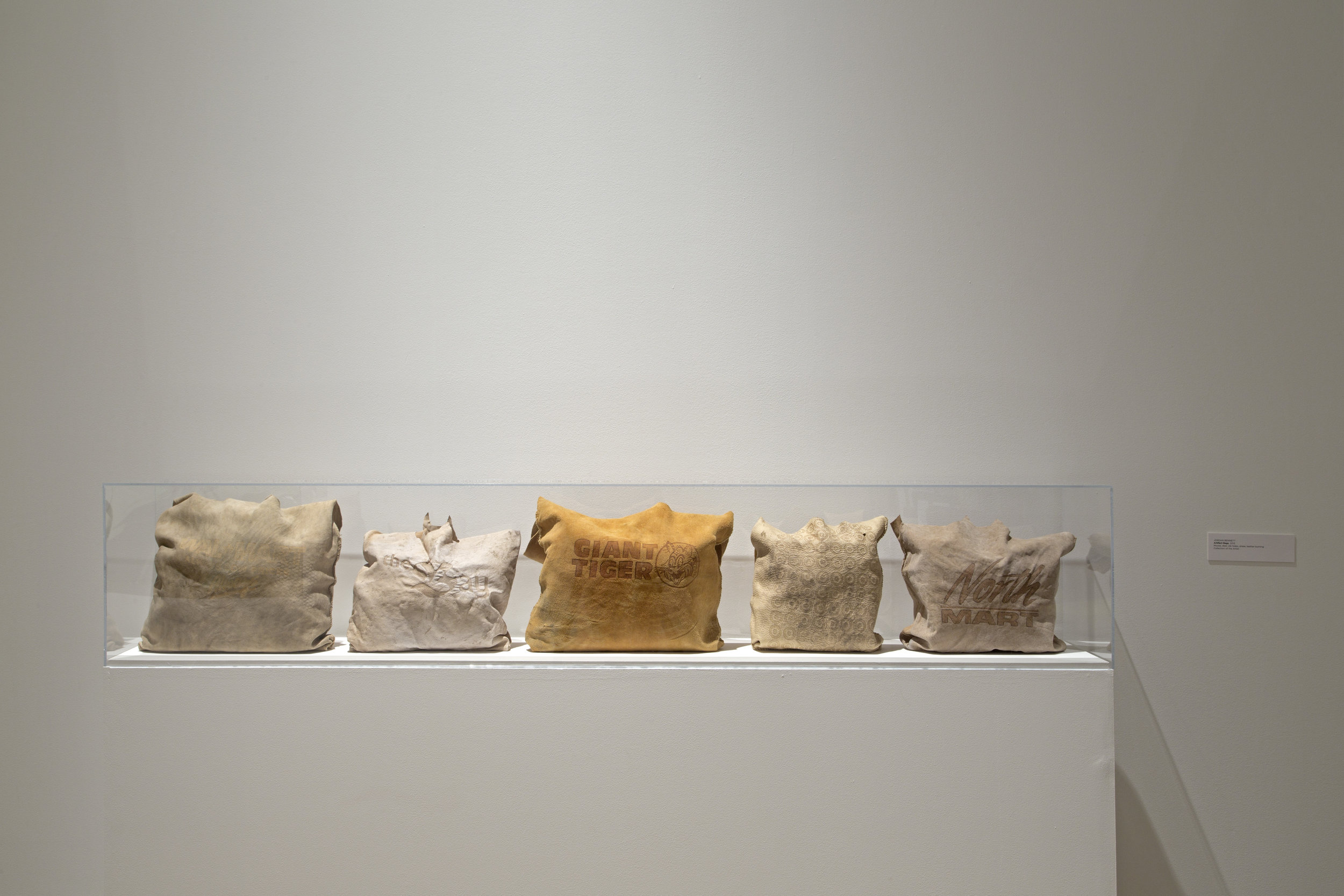 Artifact Bag: Giant Tiger, Wal-Mart, Target, North Mart, The Bay,2013-2014