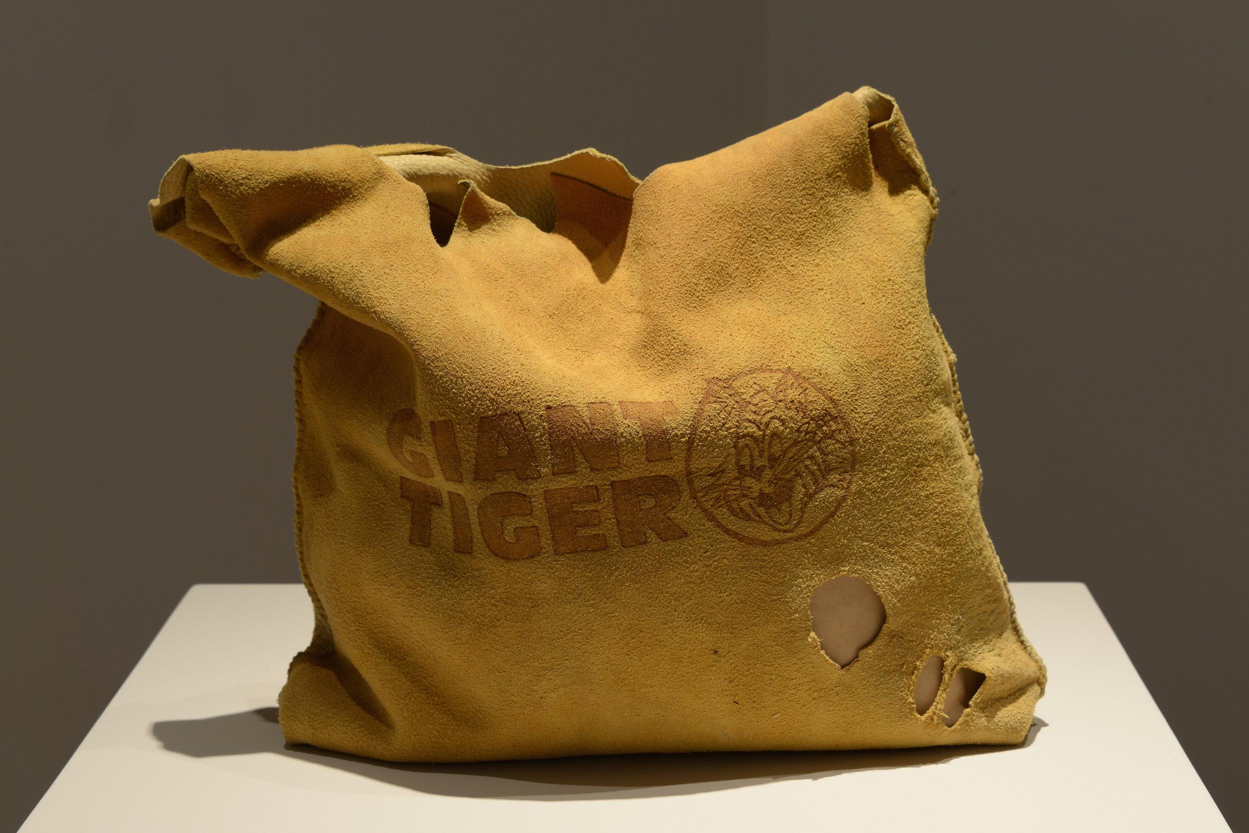 Artifact Bag: Giant Tiger 2012