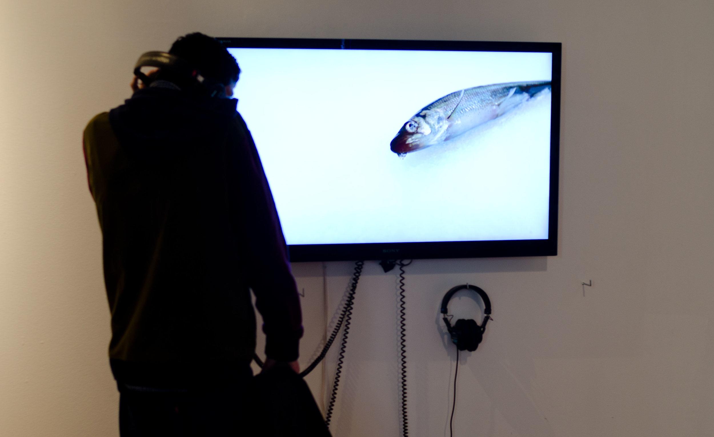 Ice Fishing, 2014