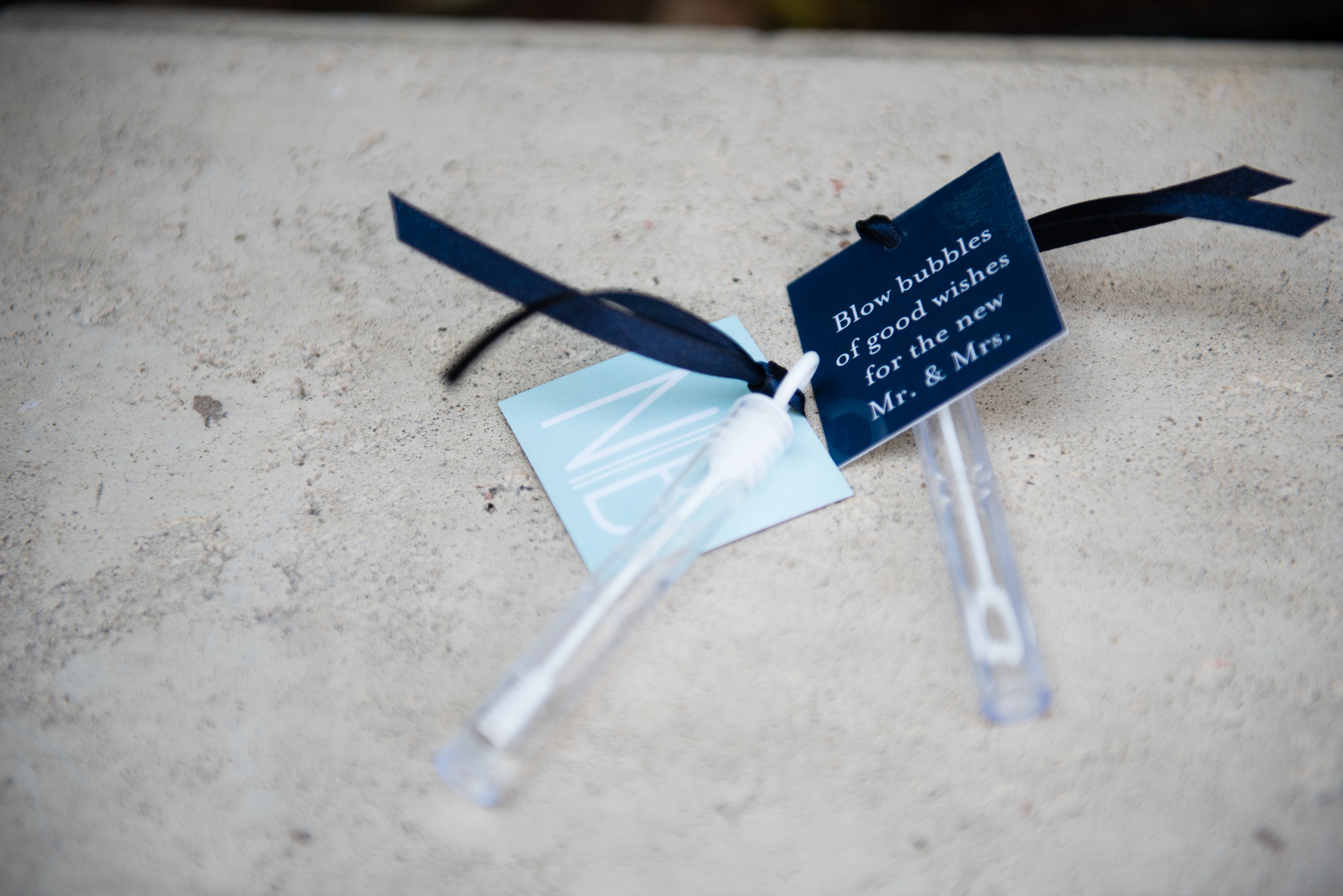 0331-Natalie-Ben-Wedding-6585.jpg