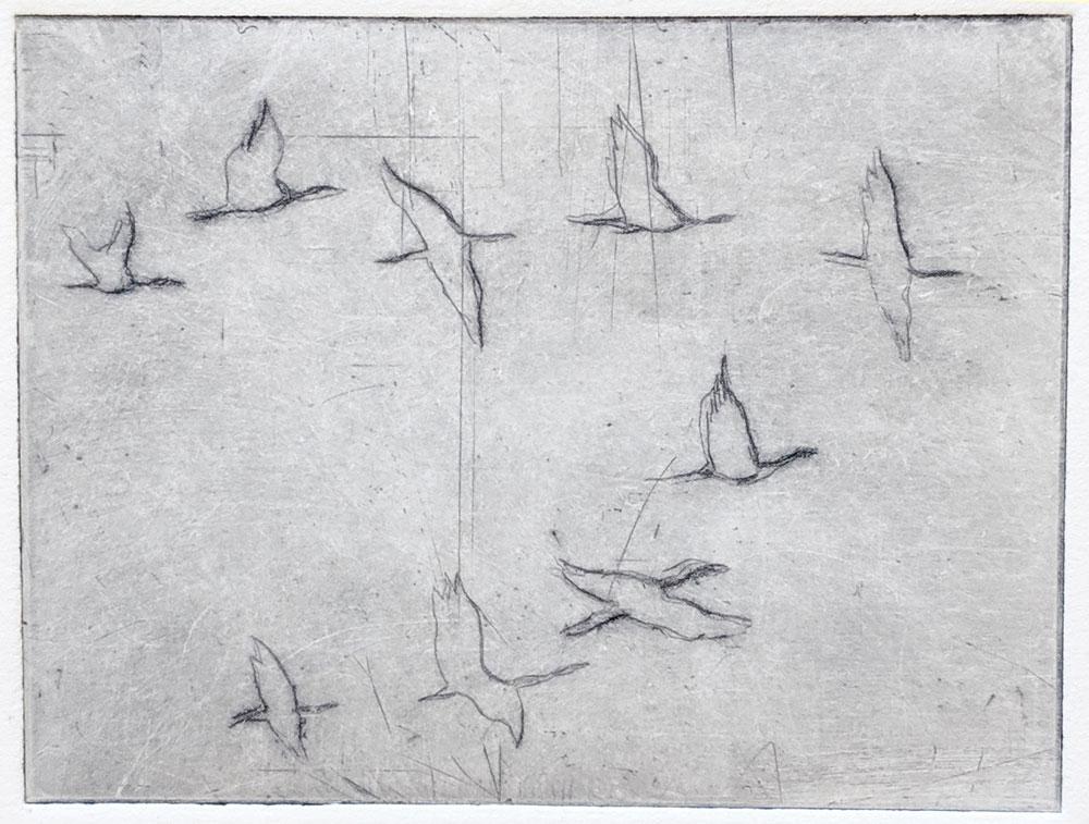 svanene-Anne-Britt-Kristiansen.jpg