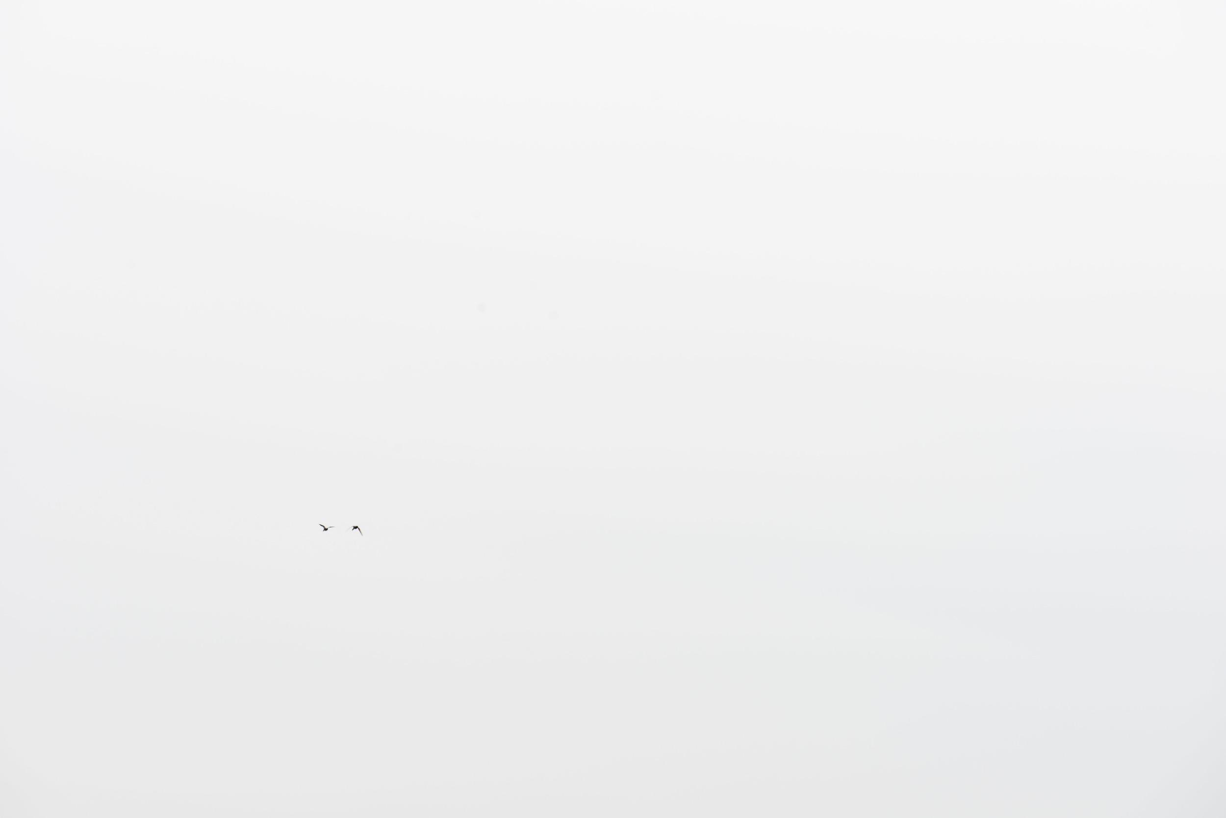 Zurich-37.jpg