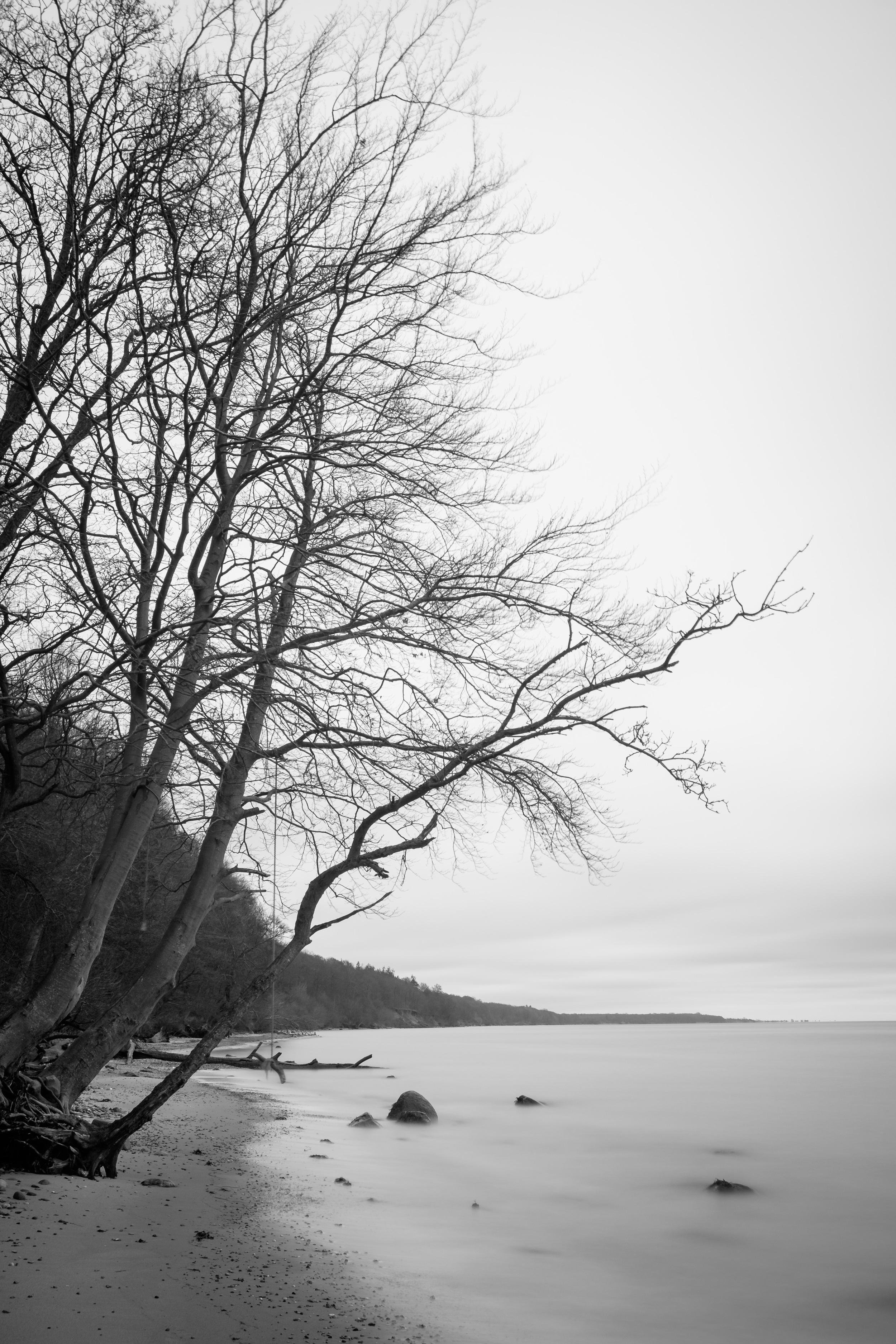 20160115-JensRohde-Staksrode strand-60.jpg