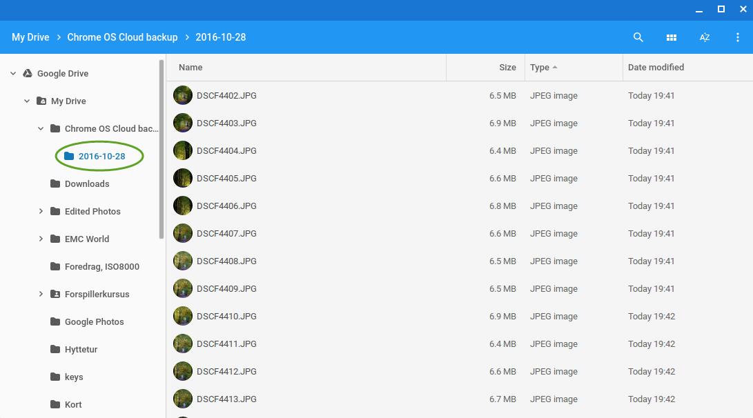 Filerne ender i en mappe med dags dato som vist ovenfor. Lav ikke om på filnavne her, hvis ChromeOS skal kunne finde ud af hvilke billeder den allerede har!