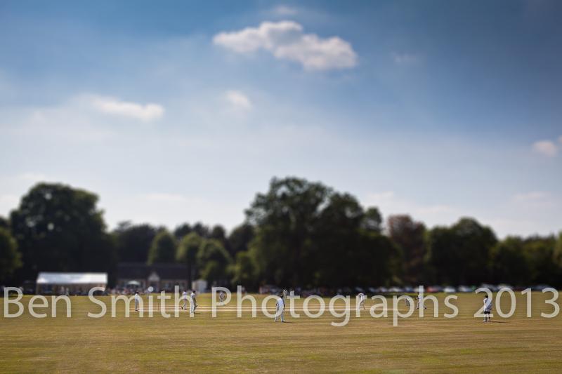 Cricket Tilt Shift.jpg