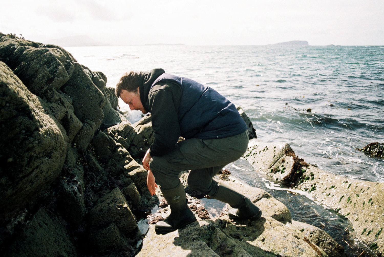 Duncan-Smallman-Easdale-Seaweed.jpg
