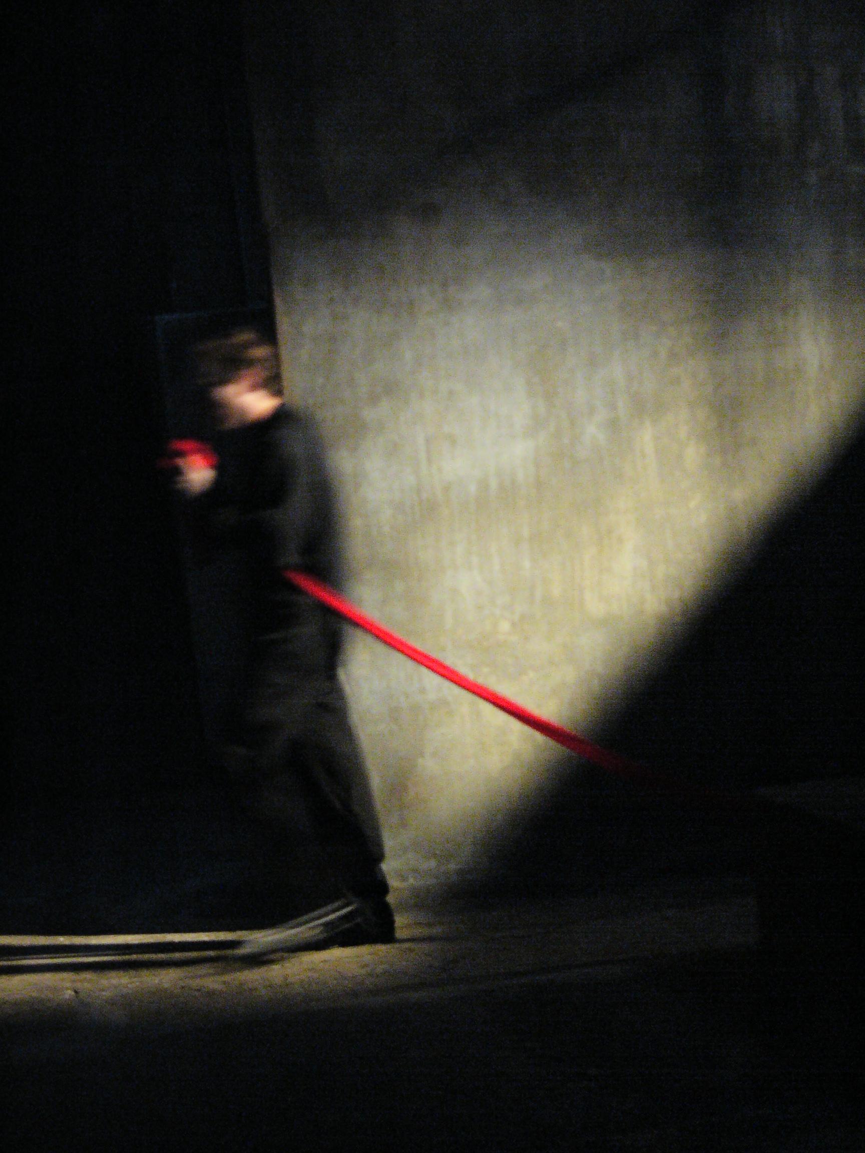 Hamlet; Ghost Machine - 2007