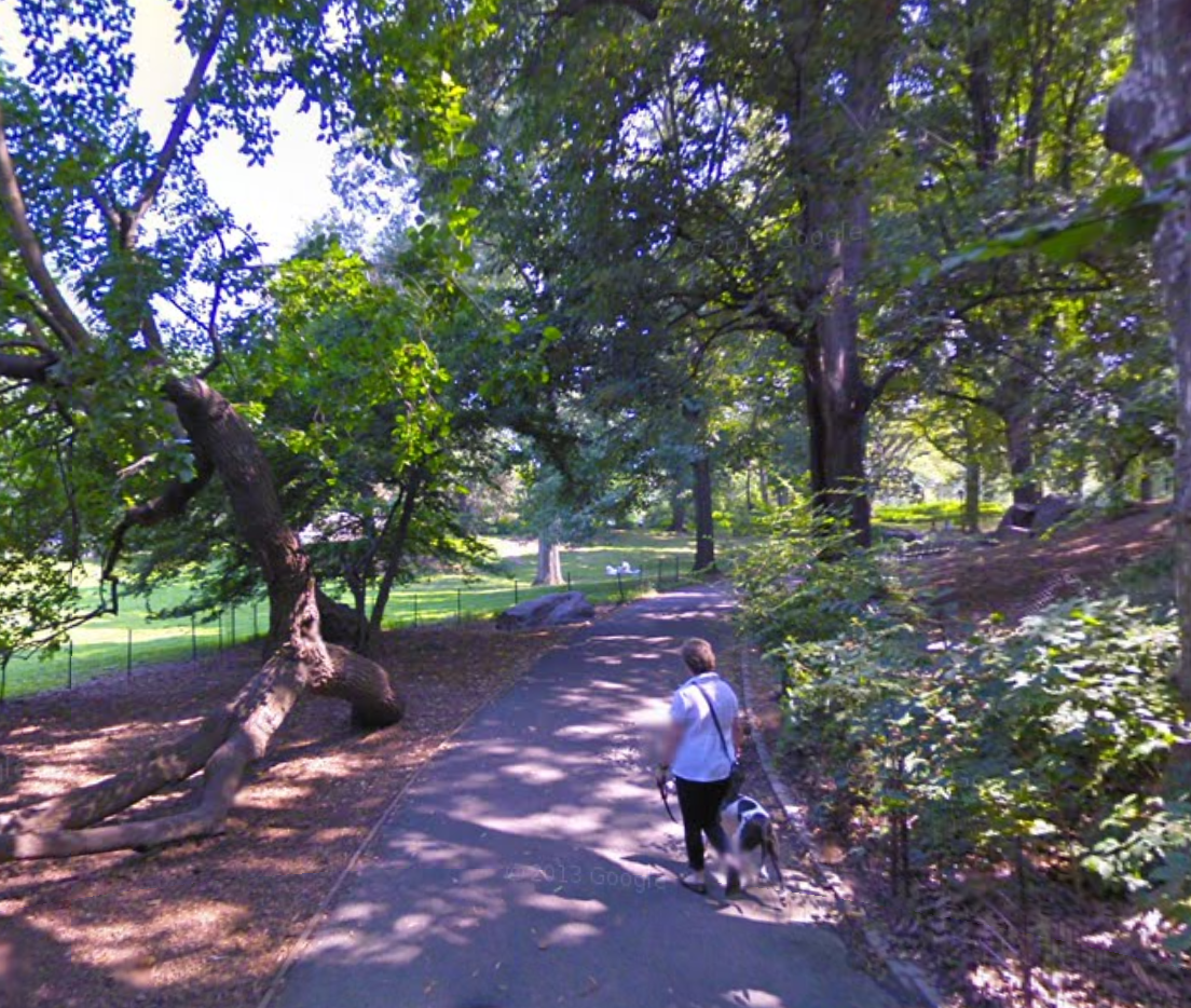 The Willow Glade meeting spot   Click the image to enter Google Street View