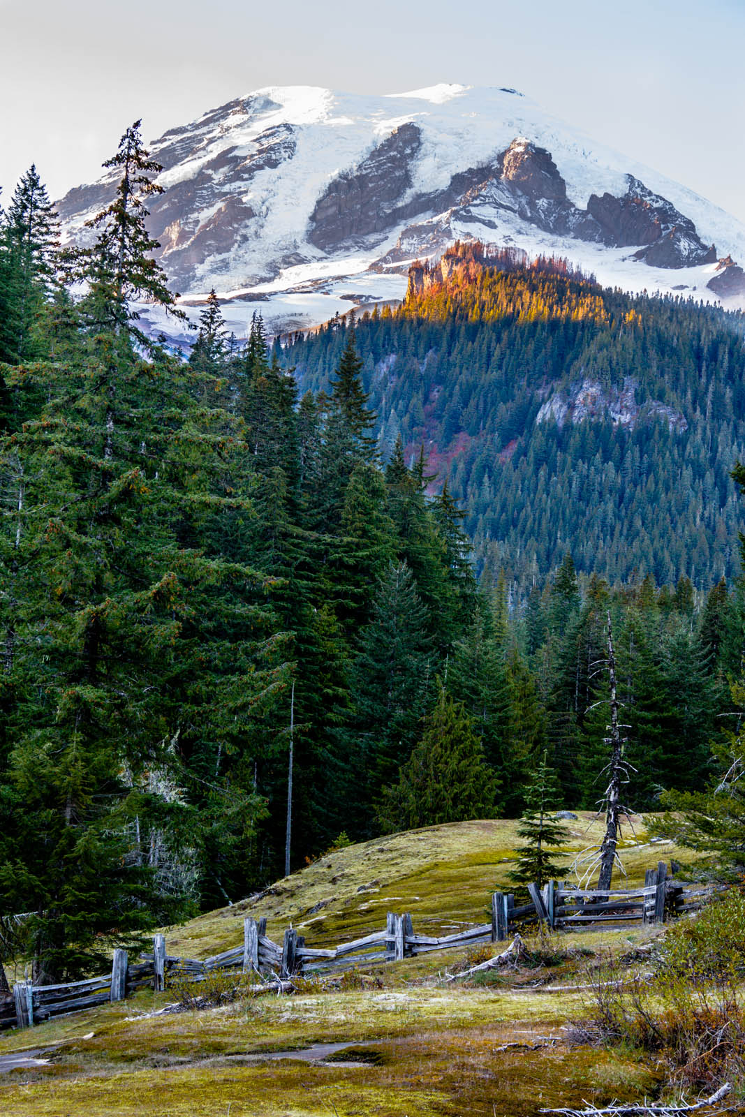 Mt. Rainier Roadtrip-7849.jpg