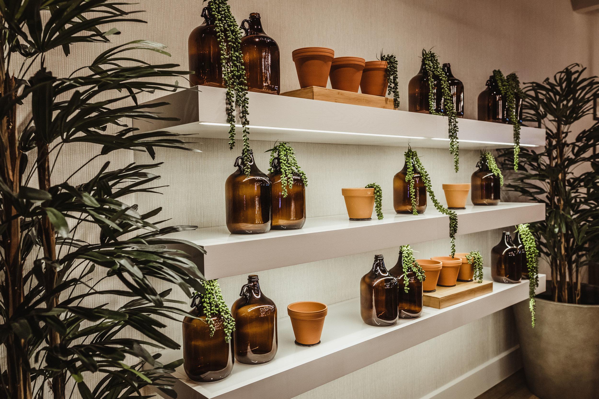 2.12.19 - Oliver Architecture - The Botanist Dispensary-42.jpg