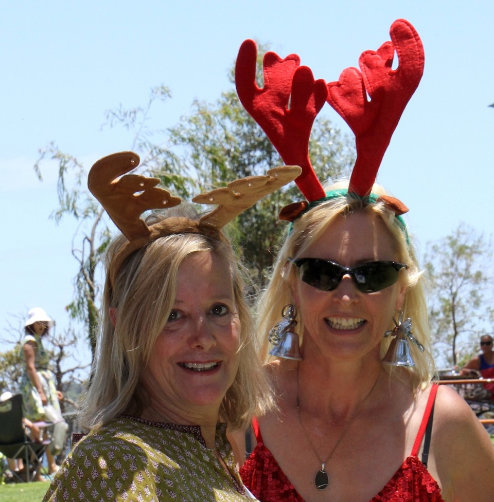Fun in the sun at the SCBWI Australia West Christmas BBQ