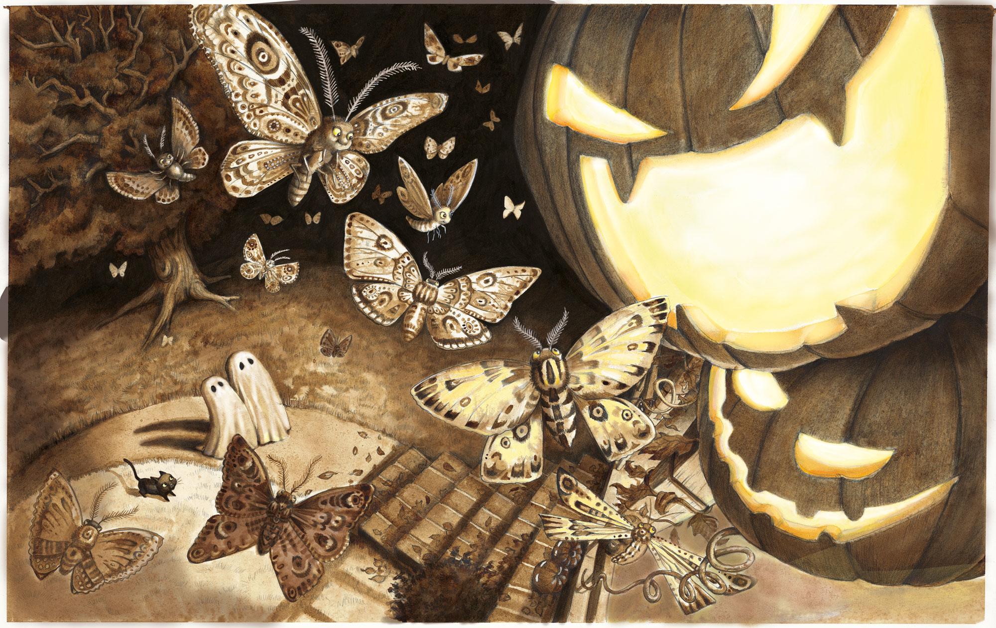 Sarah butterflies.jpg