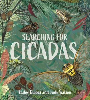 searching-for-cicadas.jpg