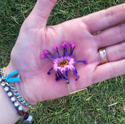 Mummy hand flower_515.jpg