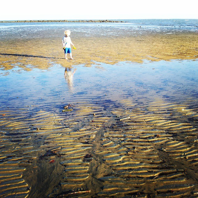 Leisurely explorations of the beach at low-tide.