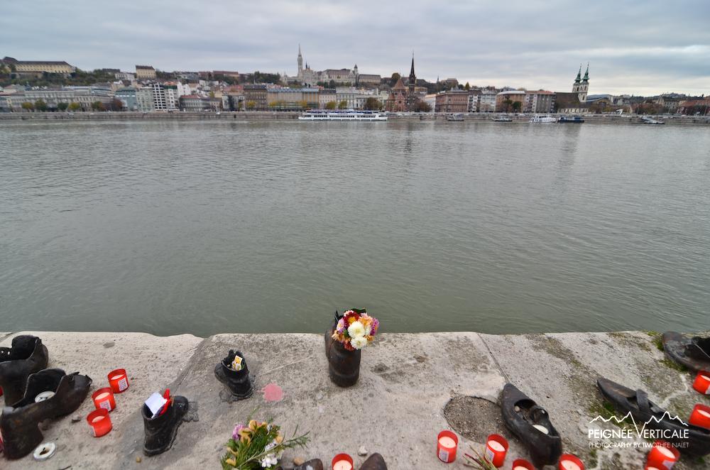 Shoes & Danube