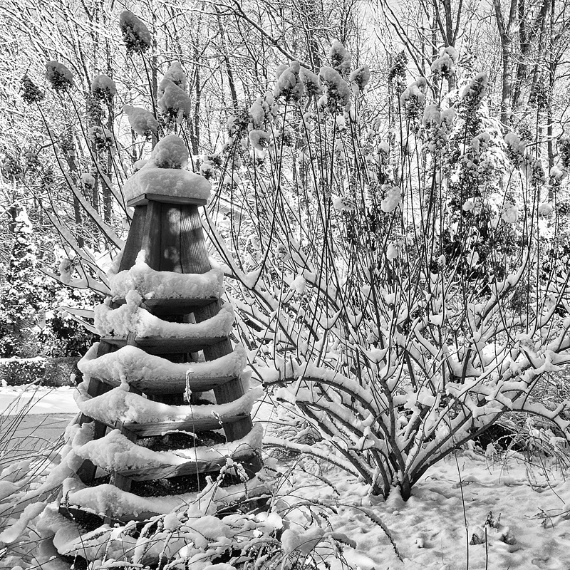 A rare snowy day in my southern garden. ©2010 Lee Anne White