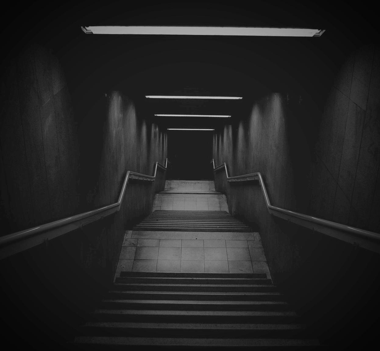ladder-1497436.jpg