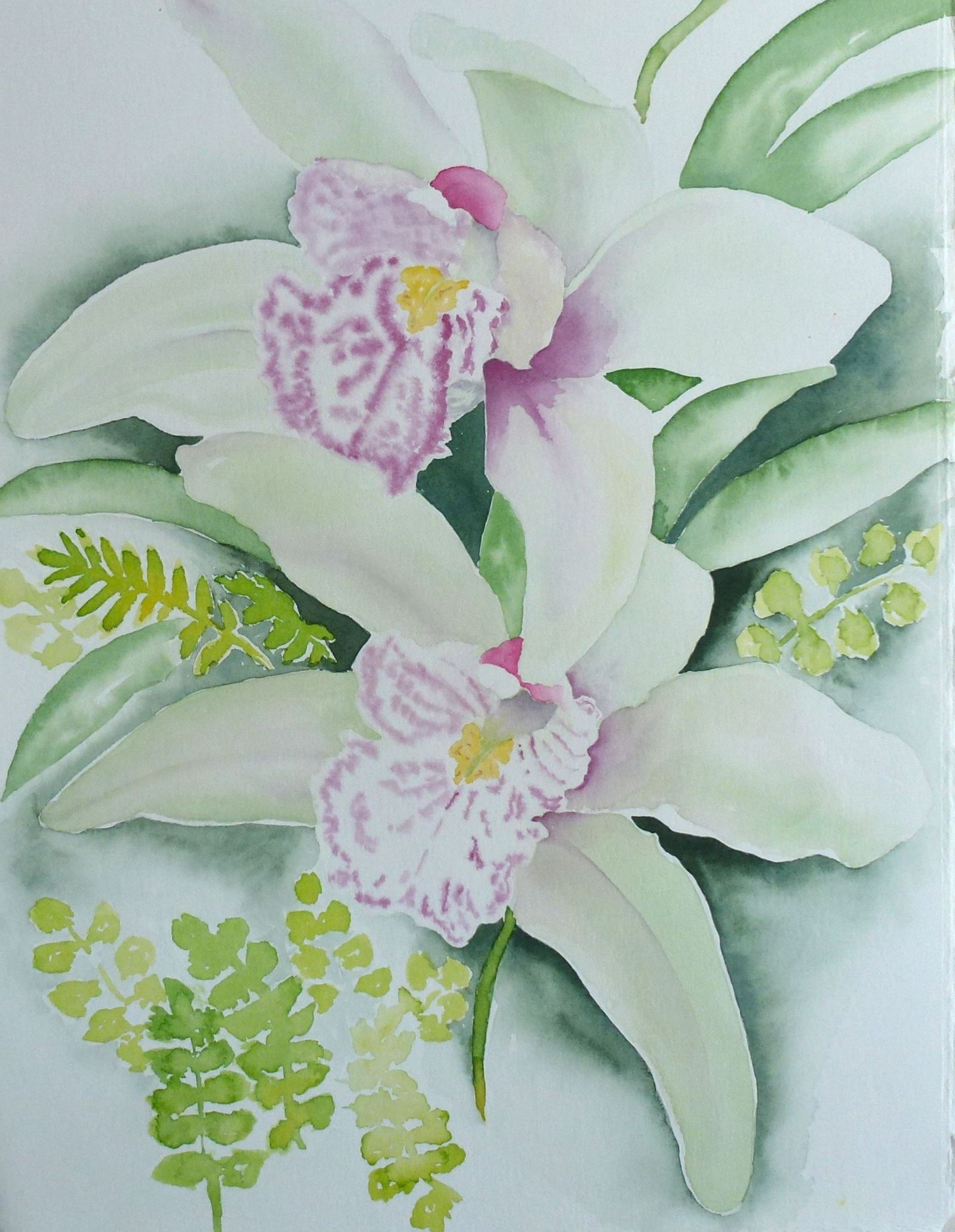 Orchid Greenery