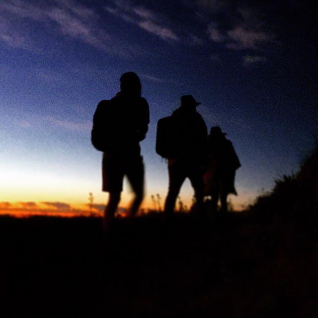 @joshfiggs @sammyoflosangeles @benjiii stocked by wild in the night