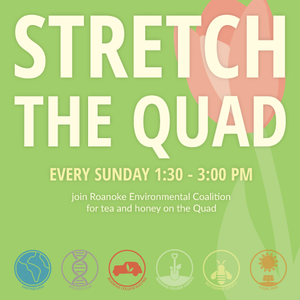 Stretch-the-Quad-FB-504x504.png