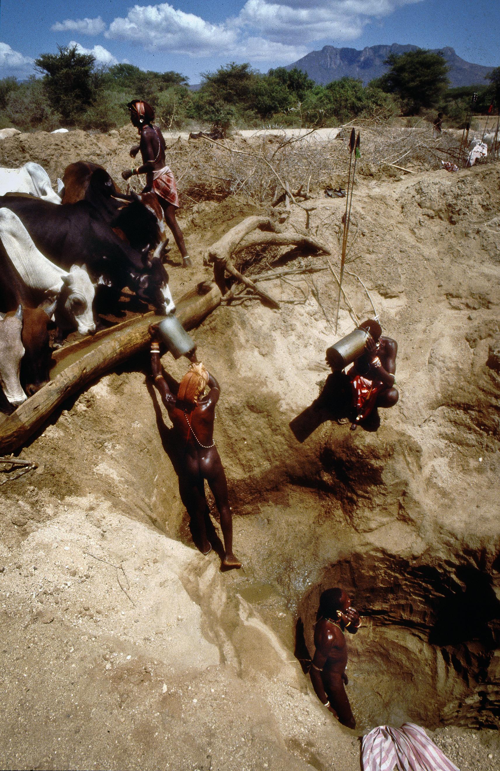 Rendille pastoralists, Marsabit, Kenya