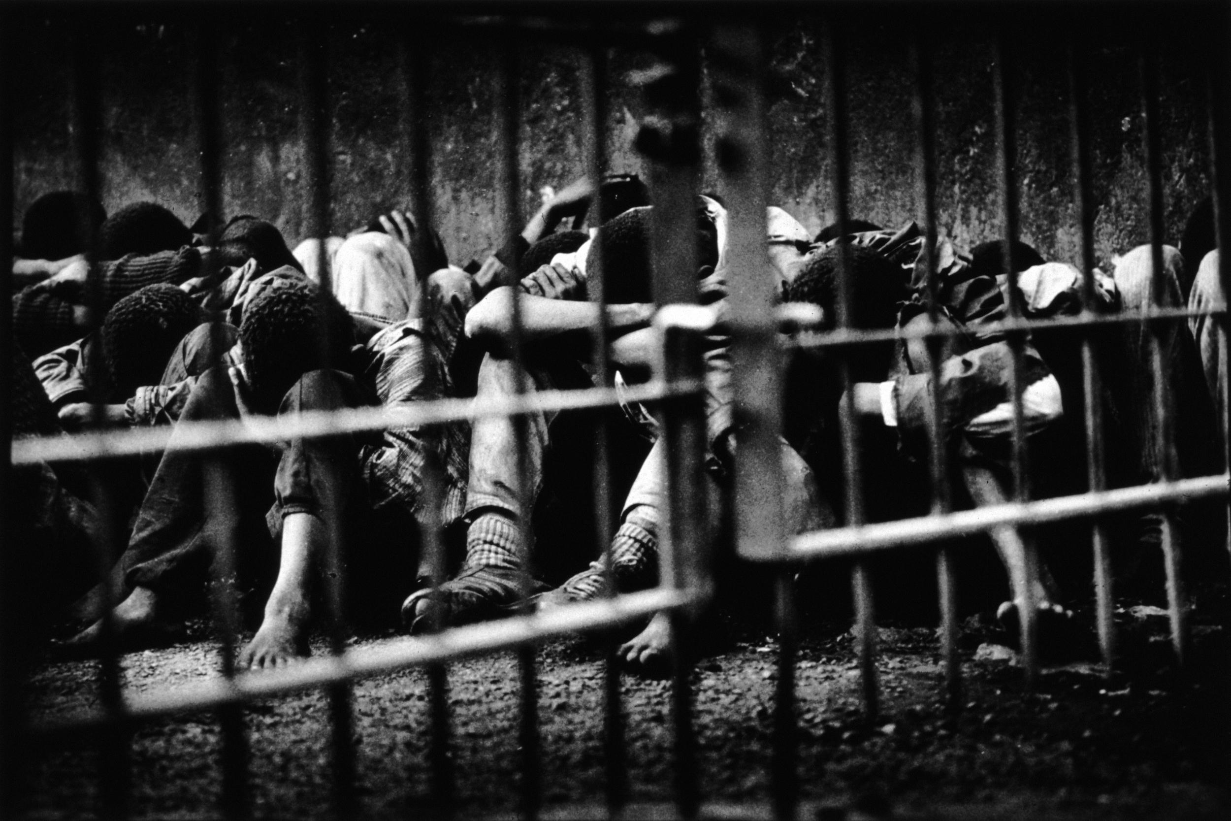 Street boys in custody