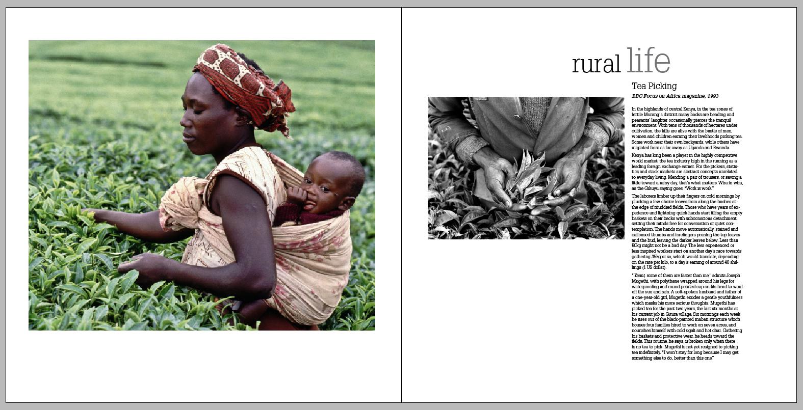 RURAL LIFE1.jpg