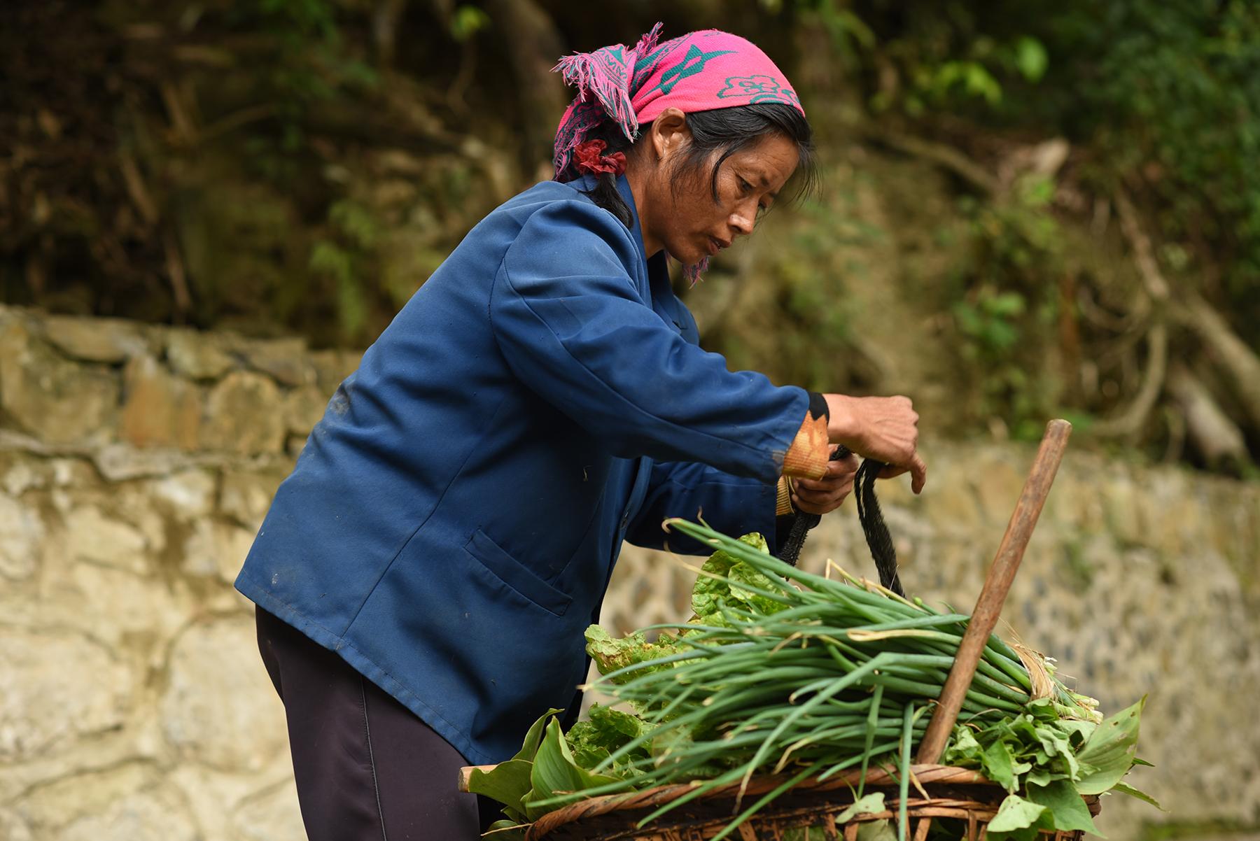 Farmer, Potuo village 2017