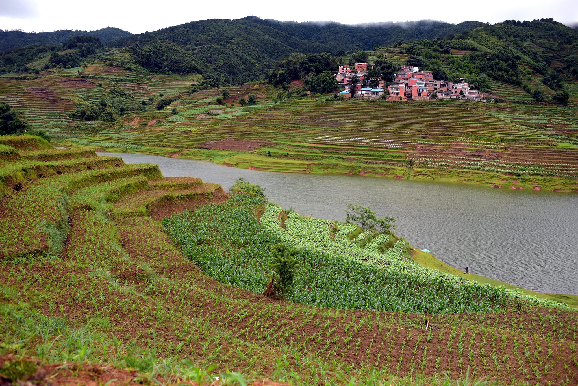 Terraced farmlands of Yunnan