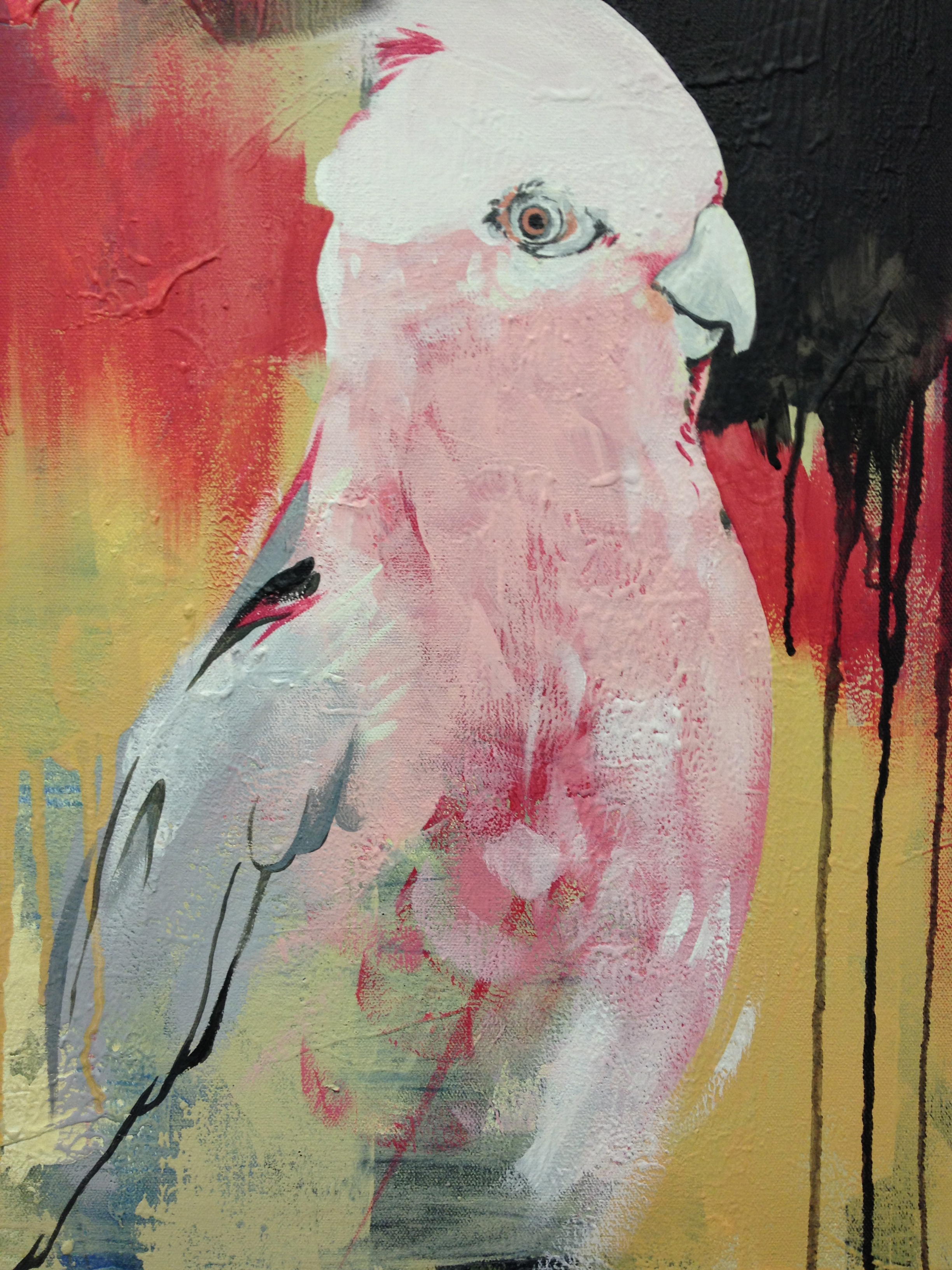"Pink Bird  2013 15.5"" x 19.5""  acrylic on canvas    $350"