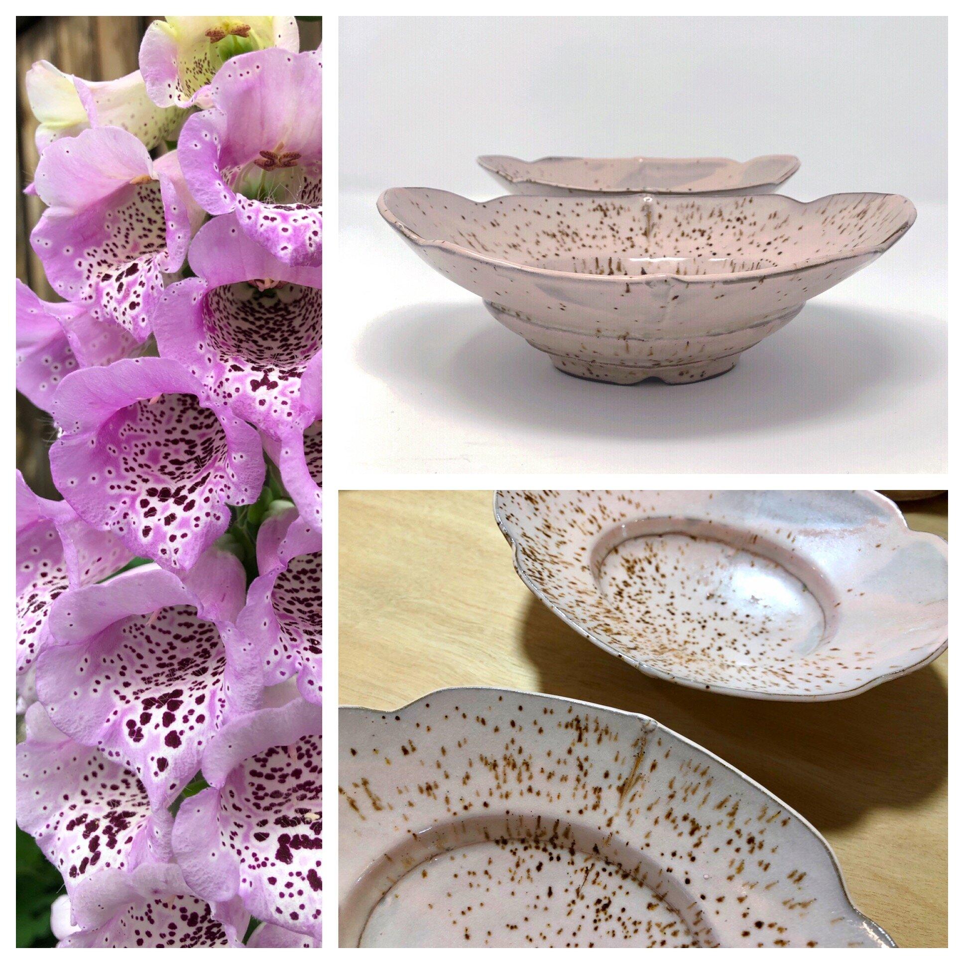 foxglove bowls 2019