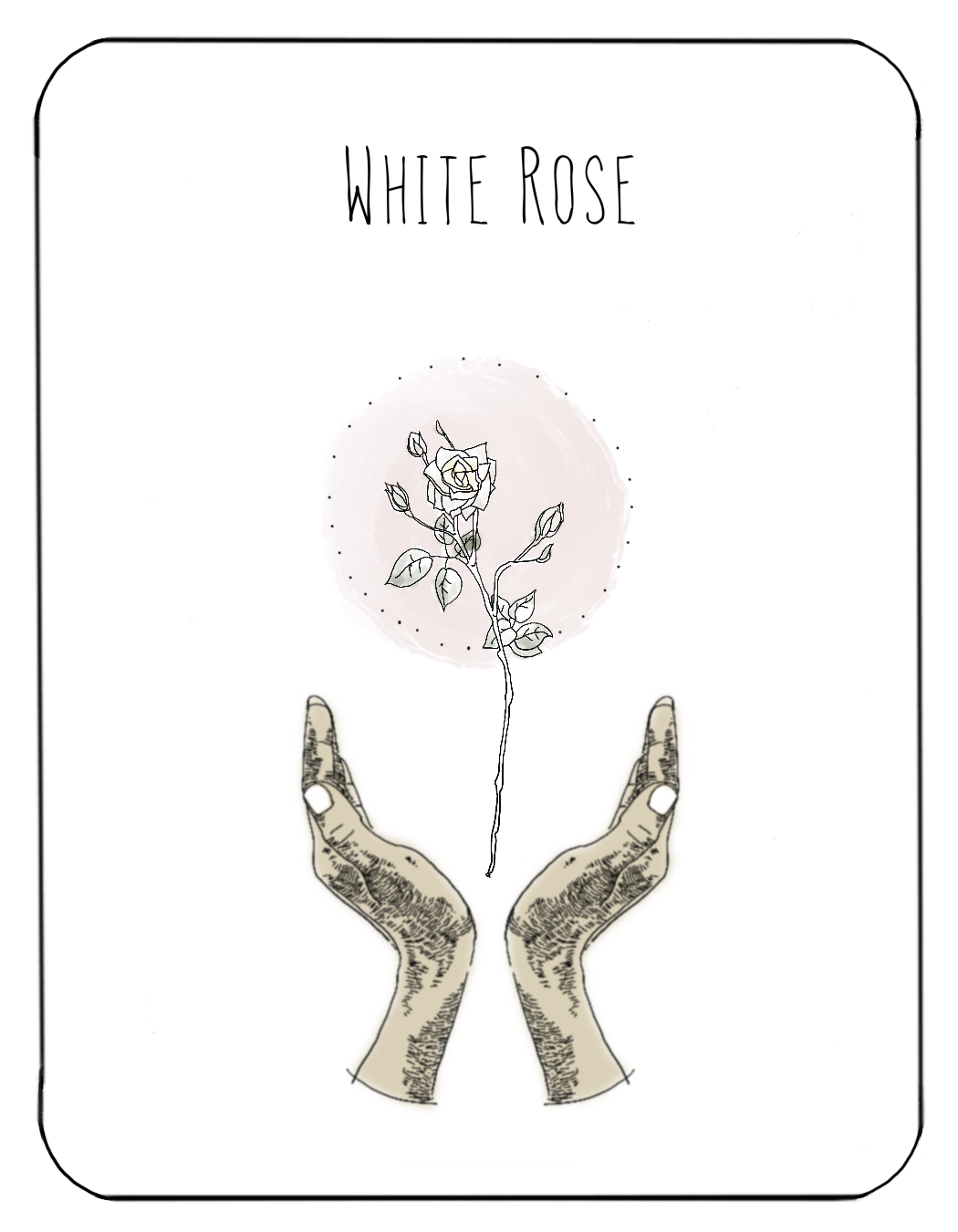 White_Rose.png