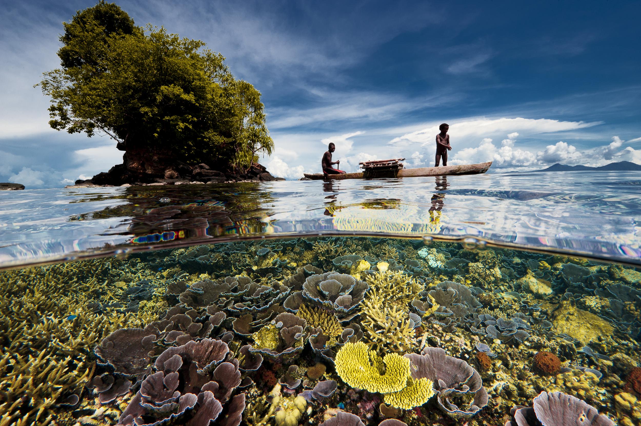 Walindi Resort-Kimbe Bay-Photo (c) David Doubilet.jpg