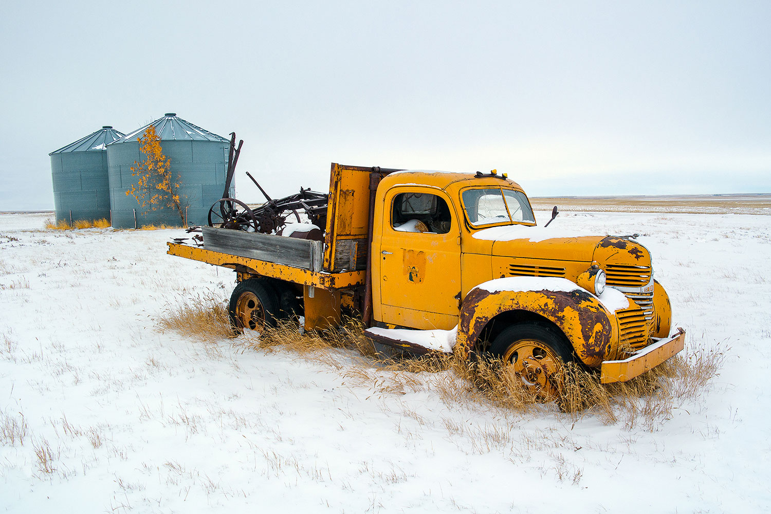 An old, abandoned, yellow Dodge pick-up truck rotting away in a cold, snow-blown field outside of Inverness, Montana.   → Buy This Print