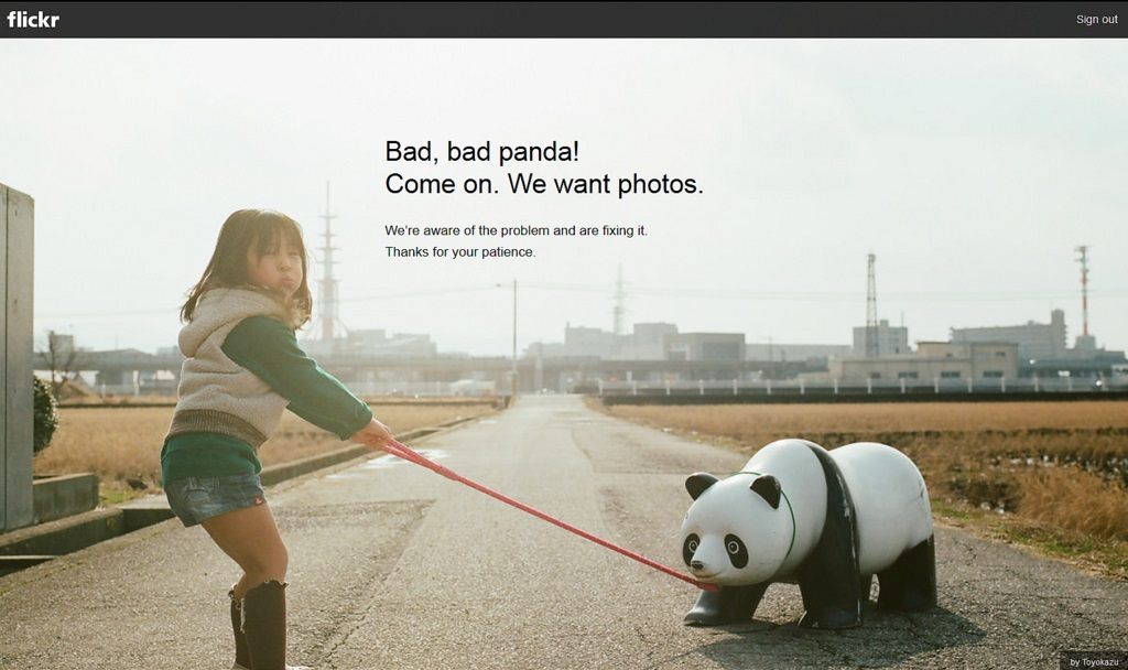 System crashes and sightings of the dreaded bad panda have increased dramatically since the May 2013 redesign of Flickr.