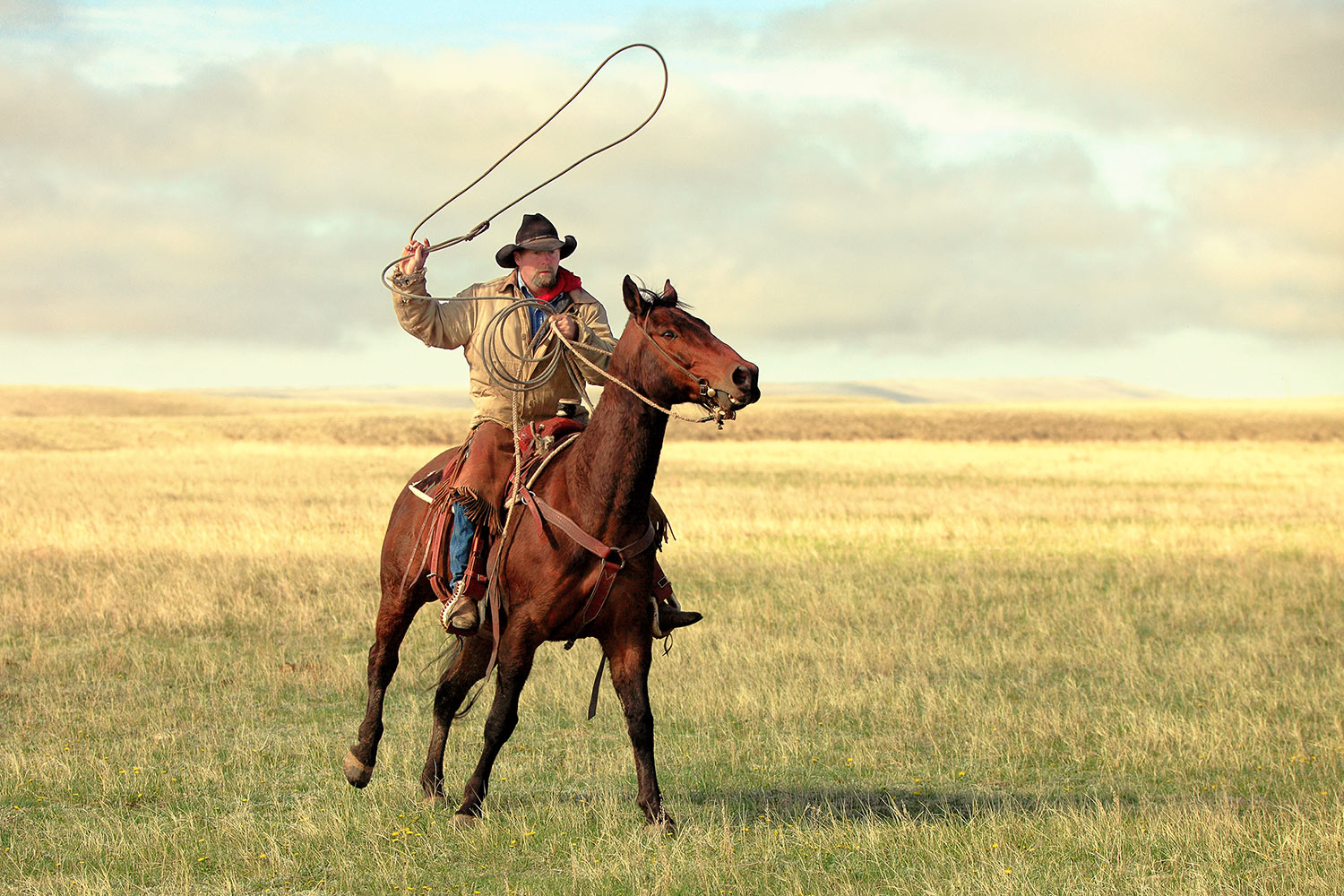 Roping on the High Plains