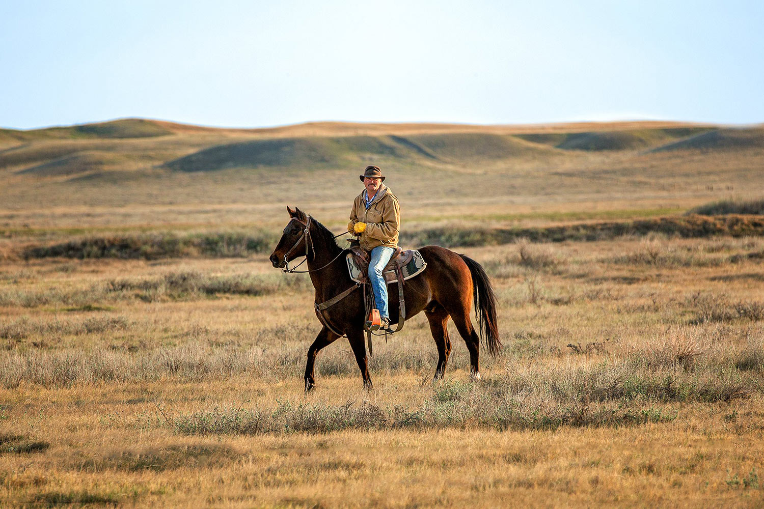High Plains Canter